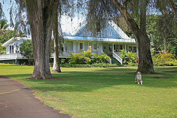 historic hawaii homes for sale 54 333 union mill road kapaau