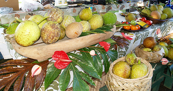 Read 'A Breadfruit Kind of Day' on soniatasteshawaii.com