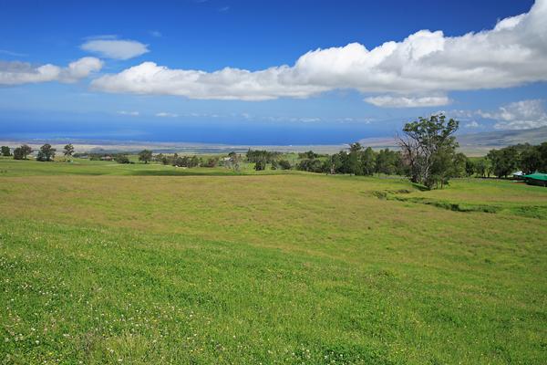 Waikii Ranch Big Island Hawaii